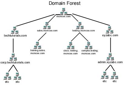 Mc mcse introduction to active directory architecture Domaine architecture